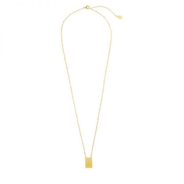 Ketting Wild & Free gouden goud dames ketting met bedel kant met tekst en dierenkop musthave fashion necklage