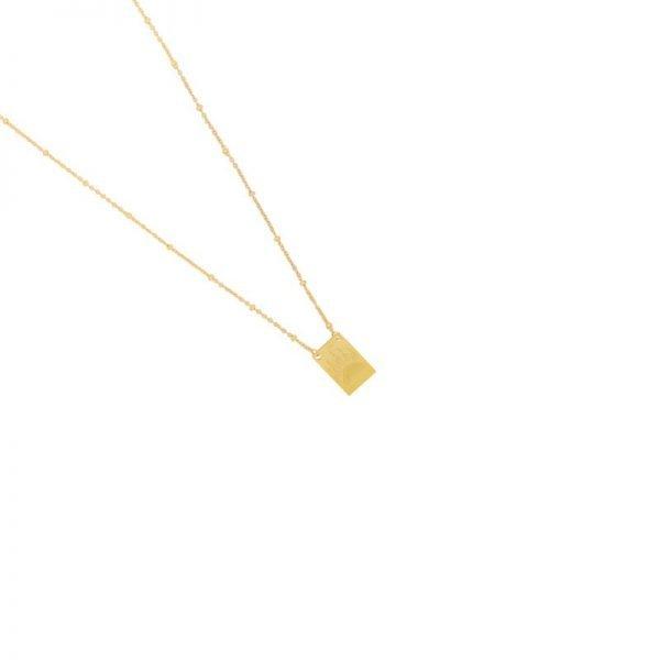 Ketting Wild & Free gouden goud dames ketting met bedel kant met tekst en dierenpoot musthave fashion necklage