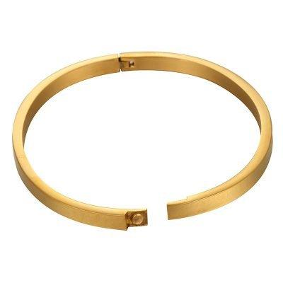 RVS Armband Young wild free goud gouden dunne dames armbanden met tekst sieraden accessoires online roest vrij staal kopen
