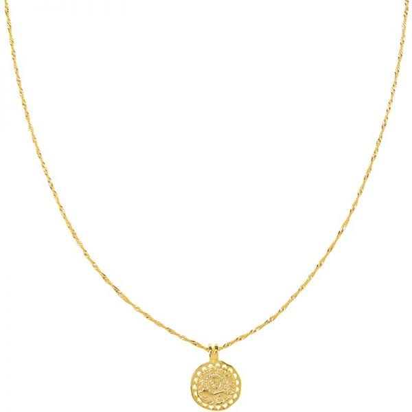 Lange Ketting Nature Calls goud gouden dunne dames kettingen ronde bedel gold plated necklage fashion musthave
