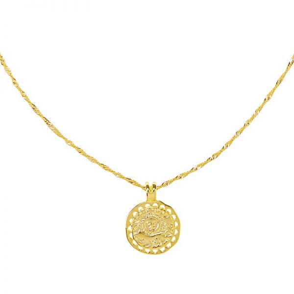 Lange Ketting Nature Calls goud gouden dunne dames kettingen ronde bedel gold plated necklage fashion musthave detail