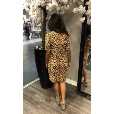 Jurk Tiger Lilly tijgerprint dierenprint jurken dames kleding mode musthave fashion bestellen kopen summer dress achter