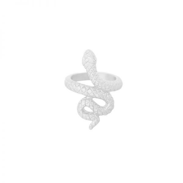 Ring Snake zilver zilveren dames ringen slang vorm rvs ringen dames sieraden online kopen bestellen