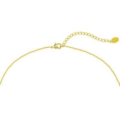 Ketting Scorpio goud gouden dames kettingen kleine schorpioen bedel musthave fashion dames sieraden kopen bestellen d