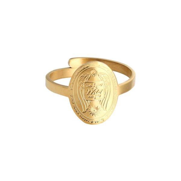 Ring Wild Side goud gouden ronde ringen take a walk on te wide sides rvs ringen kopen