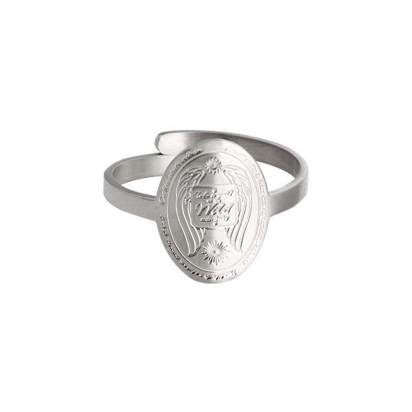 Ring Wild Side zilver zilveren ronde ringen take a walk on te wide sides rvs ringen kopen