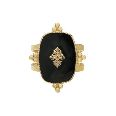 Ring Precious Leaf goud gouden ring zwart blad decoratie statementringen kopen yehwang stainless steel sieraden